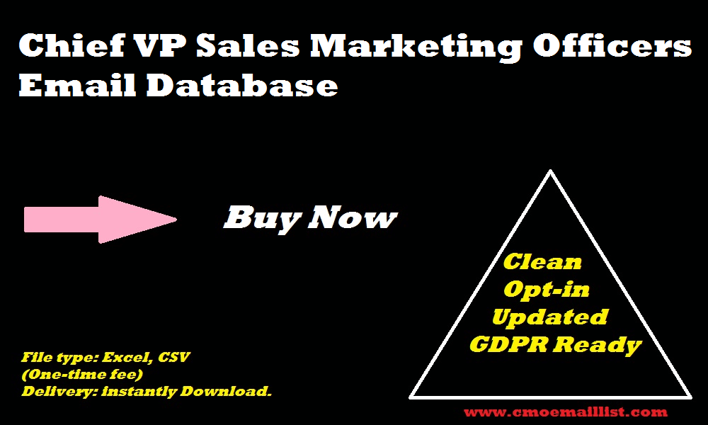 Chief VP Sales Marketing Officers Email Database